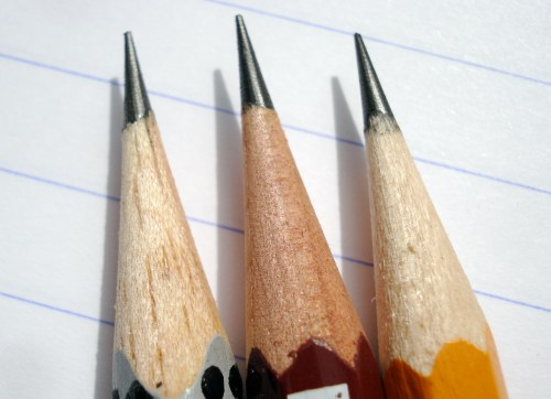 Three common wood species used in woodcase pencils.